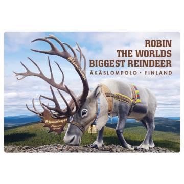 Robin Reindeer Kesä Levymagneetti