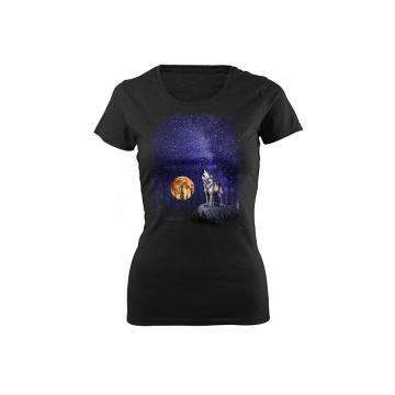 Black DC Susi ja tähtitaivas T-paita Slim