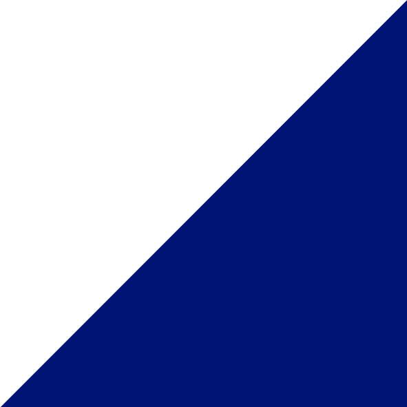 Valkoinen/Navy